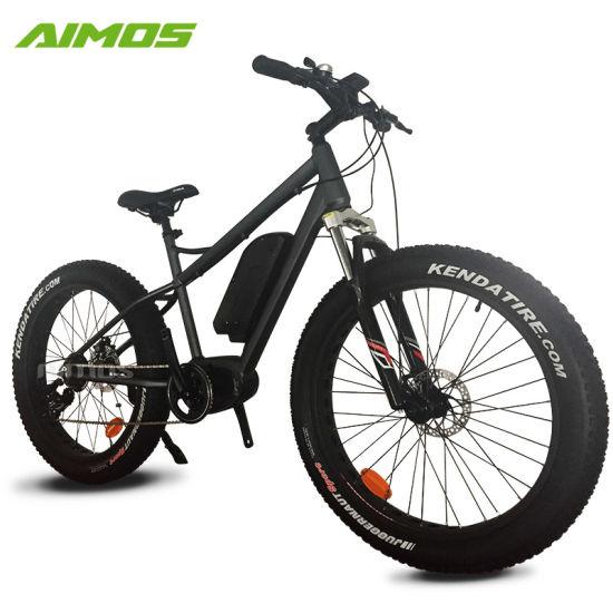 4103368c44c China E Bike 750 Watt Electric Bike Fat E Bike - China Electric ...