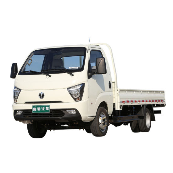 Waw Dito Gasoline Cargo Truck with Better Quality