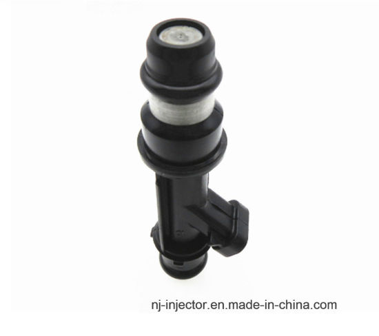 DELPHI Fuel Injector (96334808) for DAEWOO,CHEVY pictures & photos