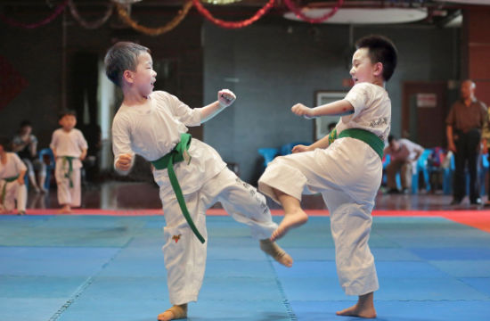 Best Interlocking Gym Mat Trade Assurance EVA Foam Taekwondo Puzzle Mat Judo Tatami Mat
