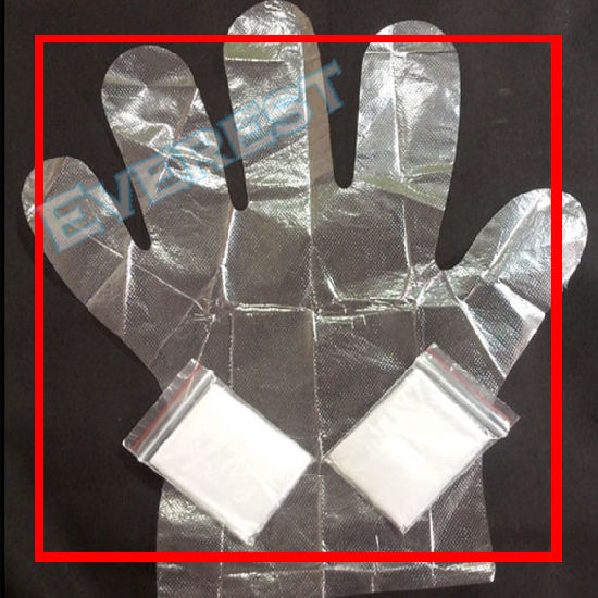 Folded Small Bag CPE Gloves