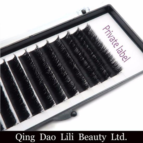 Korean PBT Material Fiber Silk Easy Fan Volume Lashes Premade Fans Eyelash  Extensions