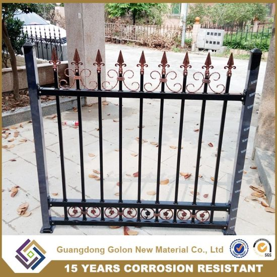 Good Quality New Design Metal Fencing for Garden or Pool pictures & photos