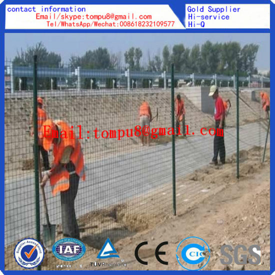 Anping Factory Euro Wire Mesh Fence pictures & photos