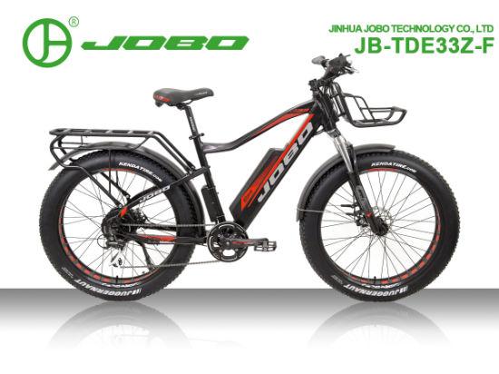 500W High Power Motorcycle MTB Electric Fat Bike in 26'' Jb-Tde33z-F