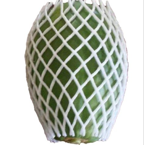 Expandable Guava Foam Net in Food Grade