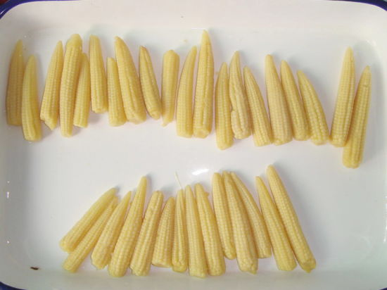 Canned Food Fresh Baby Corn Whole 425g