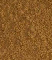 Flaxseed P. E.