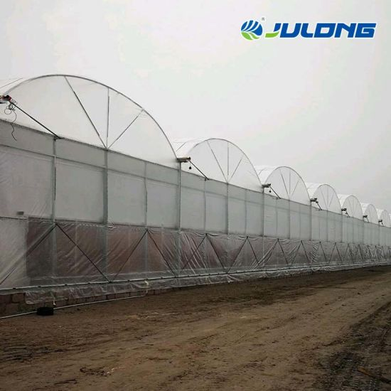 Tropical Po PE Film Greenhouses with Commercial Hydroponic Growing System for Tomato Strawberry and Lettuce