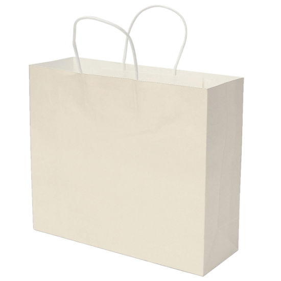 Solid Printing Large Paper Bag Simple Packaging with Ropes pictures & photos