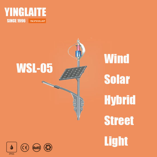 Manufacturer Ce RoHS 9m Pole 100W Wind Solar Hybrid Street Light