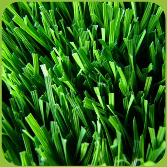 50mm Height Filling PE Artificial Turf for Soccer Field pictures & photos