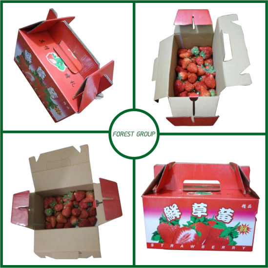 Packaging Boxes for Fresh Strawberry pictures & photos