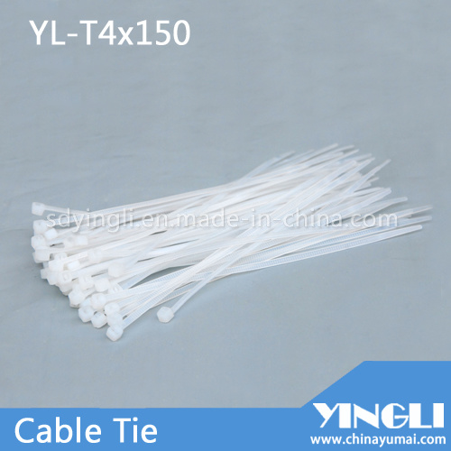 Completely New Nylon Cable Ties pictures & photos