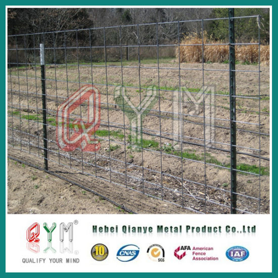 China Goat Fence Panel Wire Mesh Cattle Fence Panels Farm Fence