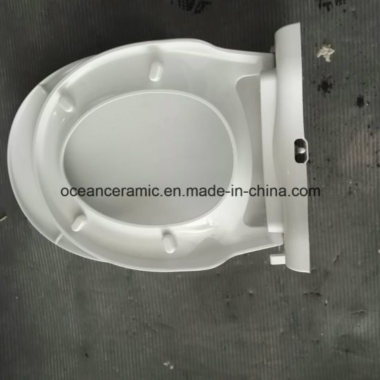 Ts-1001 Non-Electronic Bidet Toilet Seat Cover for Round Shape Toilet pictures & photos