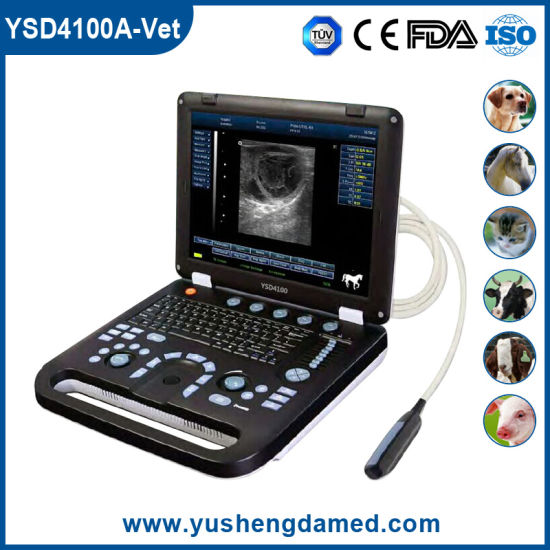 Ysd4100A-Vet Ce Approved Veterinary Laptop Digital Ultrasound pictures & photos