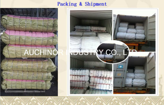 PP Woven Bag for Packing Animal Feed, Pet Food Bag pictures & photos