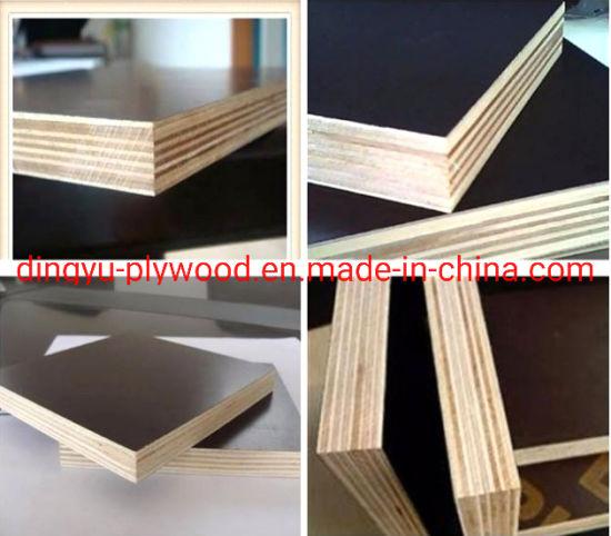 Black/Brown Film Faced Plywood, Marine Plywood, Construction Plywood, Phenolic Plywood