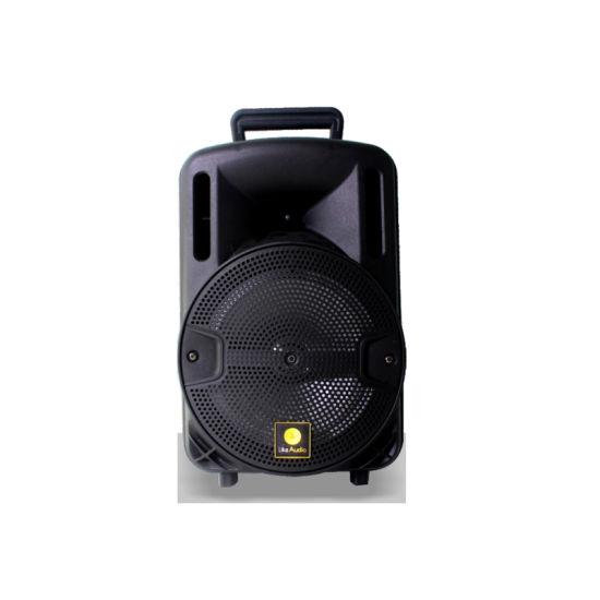 OEM Guangzhou as-Series 8 Inch Portable Speaker as-8