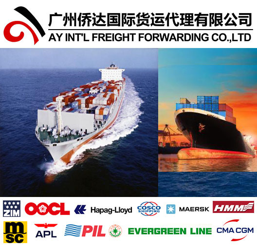 Professional Shipping Service to Zambia From China pictures & photos