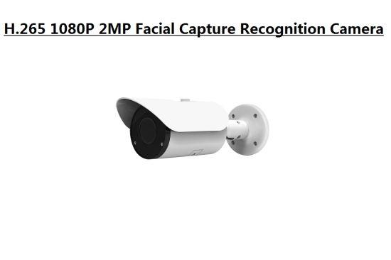 1080P Ai Intelligent Face Capture Recognition Detector IP Camera