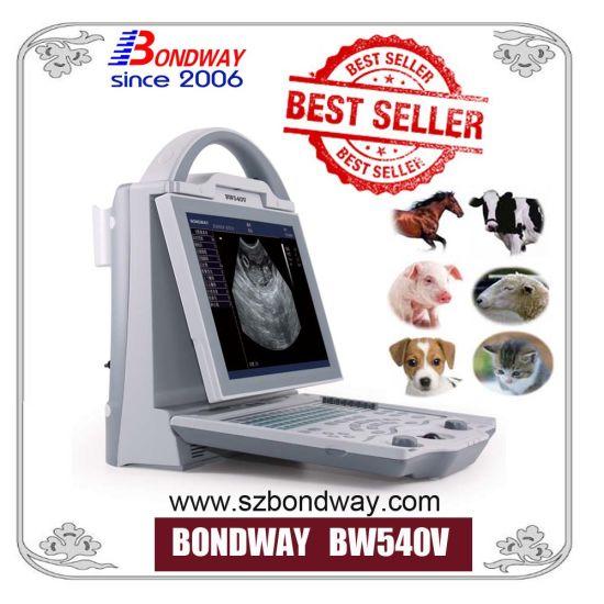 Diagnosis Equipment Digital Veterinary Ultrasound