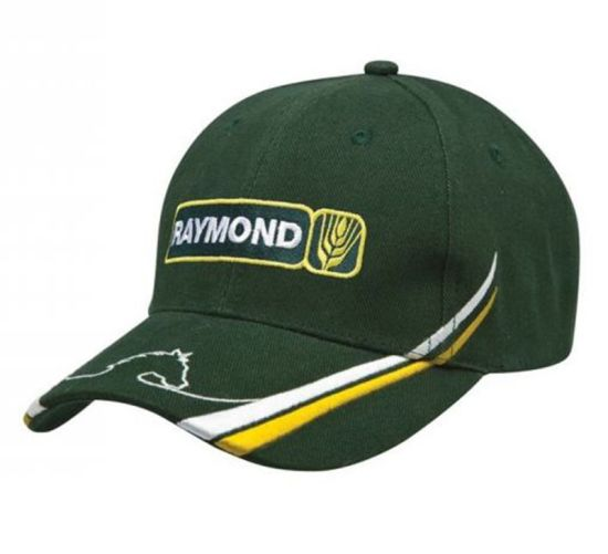 Good Embroidered Baseball Cap for Promotion or Sports pictures & photos