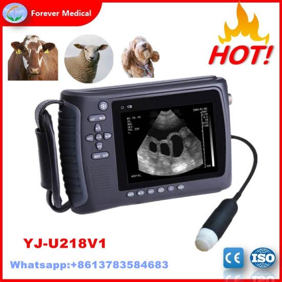 High Resolution Veterinary Handheld Ultrasound Scanner for Cow, Sheep Yj-U218V1