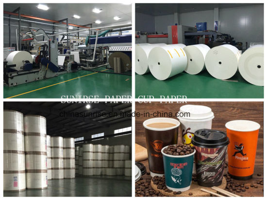 PE Coated Paper Cup Paper Rolling for Paper Cups Making
