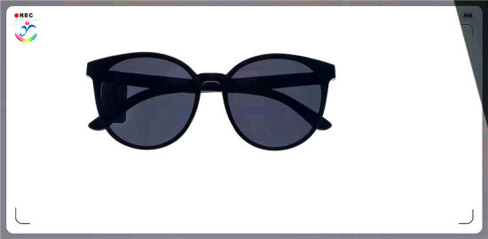 Hot New PC Polarized Sunglasses Manufacturers Direct