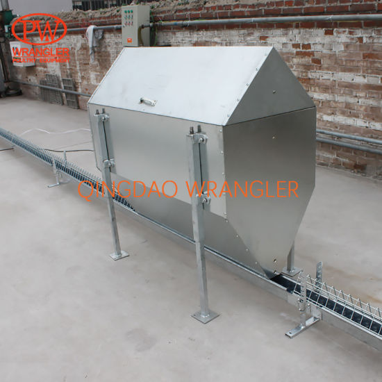 New design Poultry Farm House Design Poultry Chain Feeding System