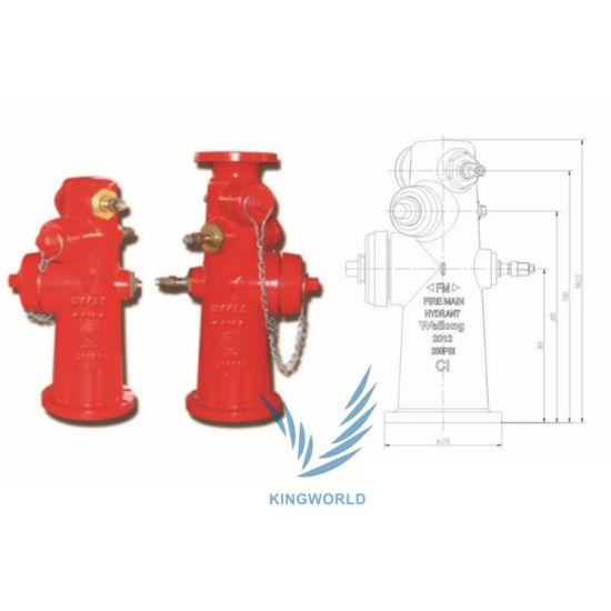 China Weflo Wet Type Fire Hydrant Fire Valve China Fire Hydrant