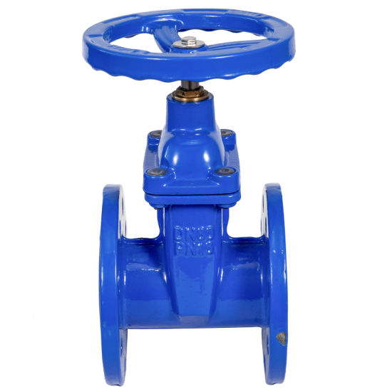 Buy 12 Inch Cast Iron or Ductile Iron Rubber Seat Flange Gate Valve