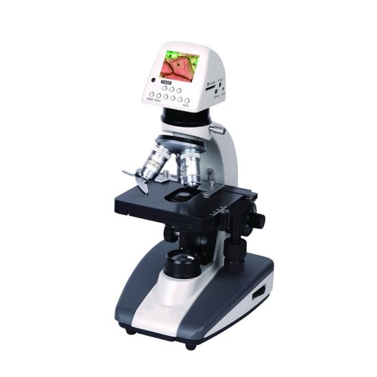 Shd-34 Medical Laboratory Binocular Microscope pictures & photos
