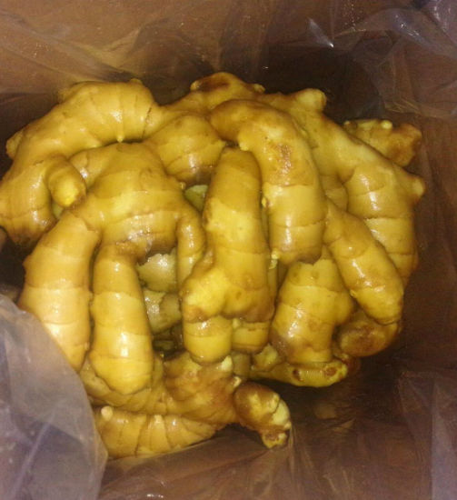 Golden Supplier of Fresh Ginger 200g and up pictures & photos
