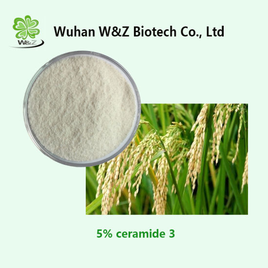 100% High Quality Natural 5% Rice Ceramide 3 Powder