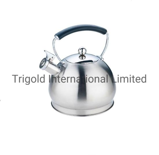 Unique Design Stainless Steel Water Kettle Coffee Kettle Tgk2967