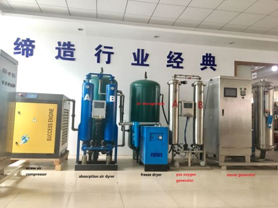 5000g Ozone Machine for Chemical Tail Gas Disposal