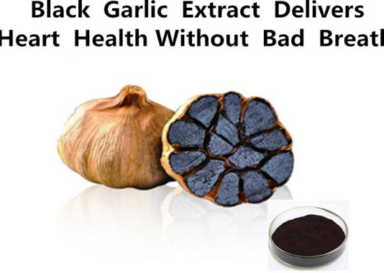 Powder Black Garlic Extract Delivers Heart Health Without Bad Breath