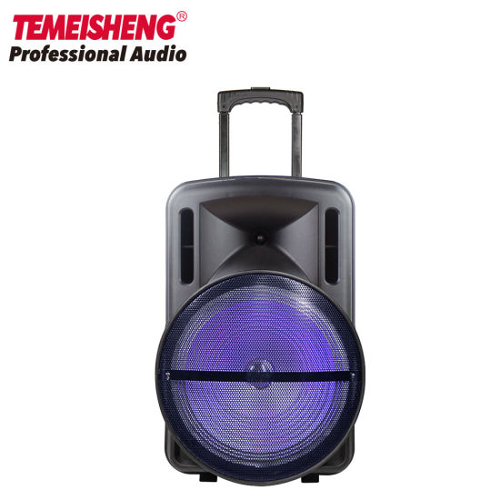 Temeisheng 15 Inch Bluetooth Rechargeable Trolley Speaker