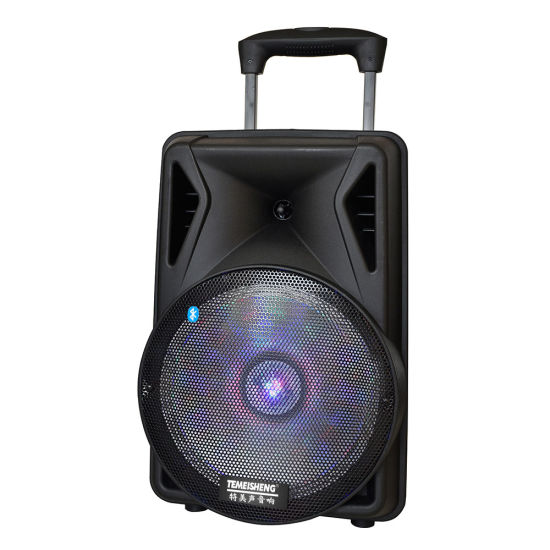 Temeisheng 12 Inch DJ Portable Bluetooth Speaker Box with Disco Light