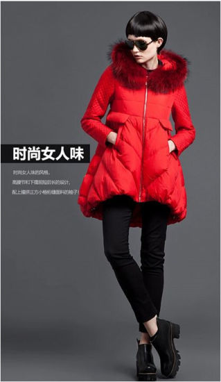 Wholesale Women Clothing Brand Stock Trend Warm Winter Down Coat Jacket
