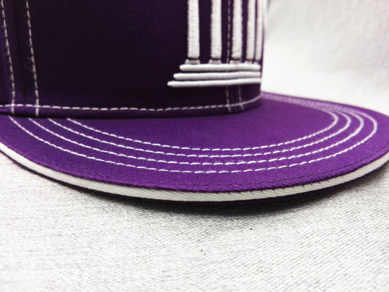 67df41d3152 China Customized Wholesale Embroidery Hip Hop Hats (LP003-A) - China ...