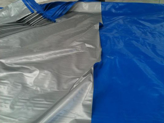 Hot Selling Chine PE Tarpaulin pictures & photos