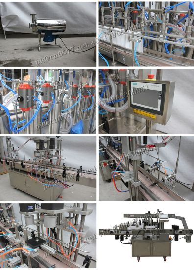 Automatic Piston Paste and Liquid Filling Machine with 6 Heads (Gt6t-6g) pictures & photos