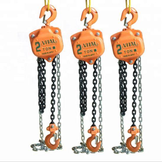 1ton 2ton 3ton 5ton 10ton Vital Chain Block