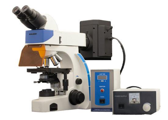Binocular Upright Fluorescence Microscope Medicine Clinical and Biology Research