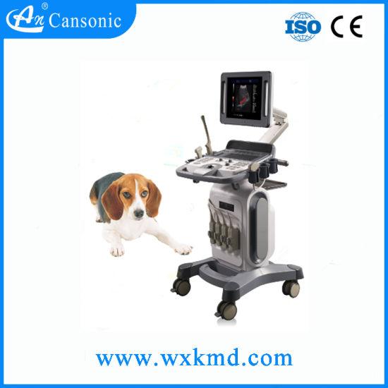 Trolley Doppler Ultrasound Scanner for Vet