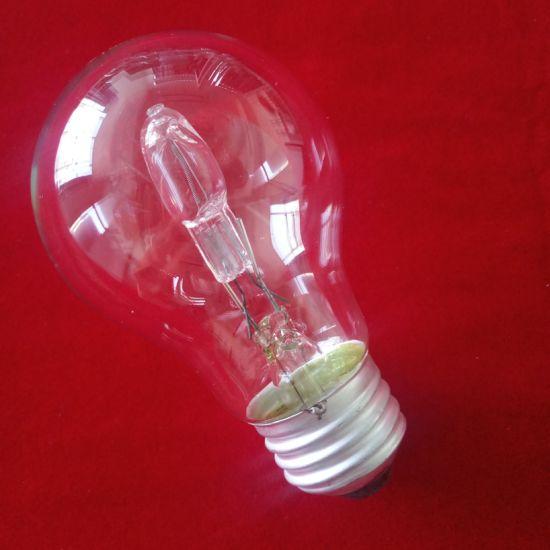 Energy Saving Halogen Bulbs Planting Growth